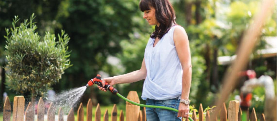 Prepara tu jardin